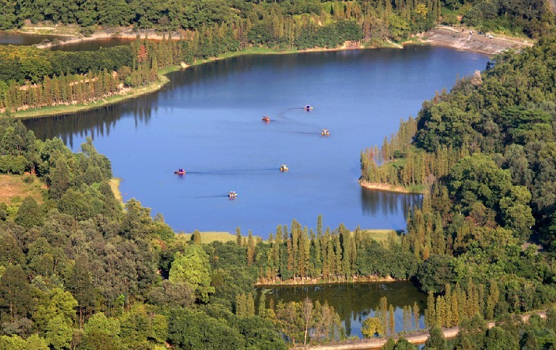 森林公园广播vwin152